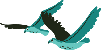 Illustration of Ospreys