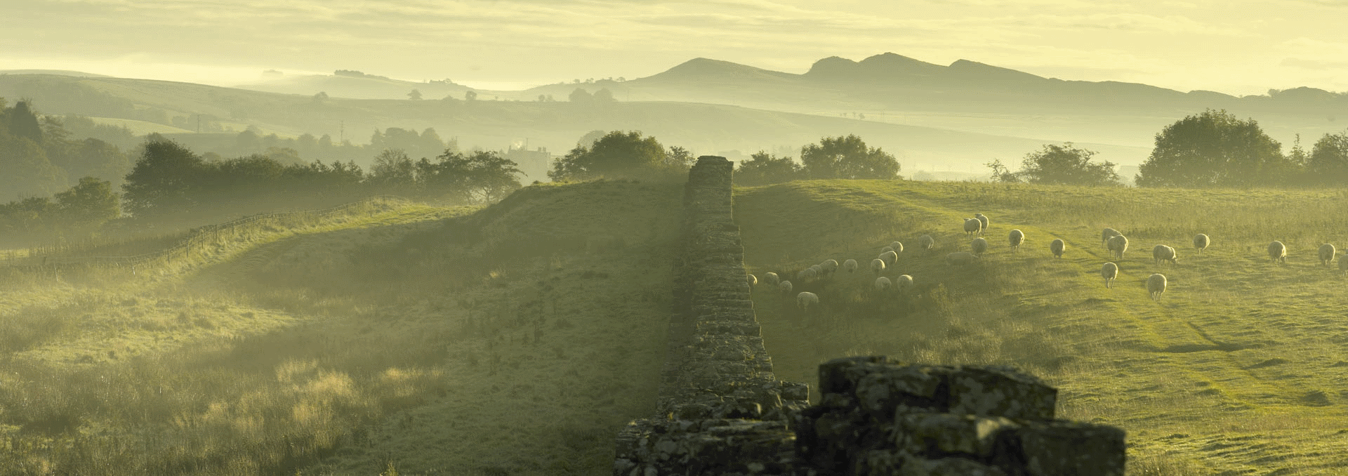 Hadrians Wall in Allerdale