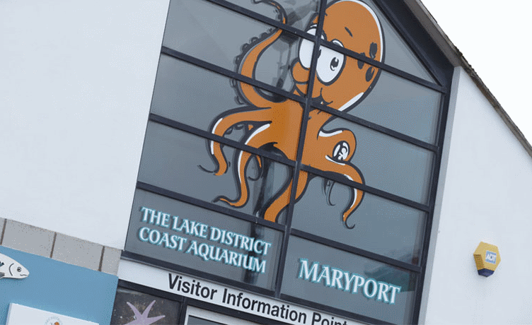 Maryport Aquarium in Allerdale