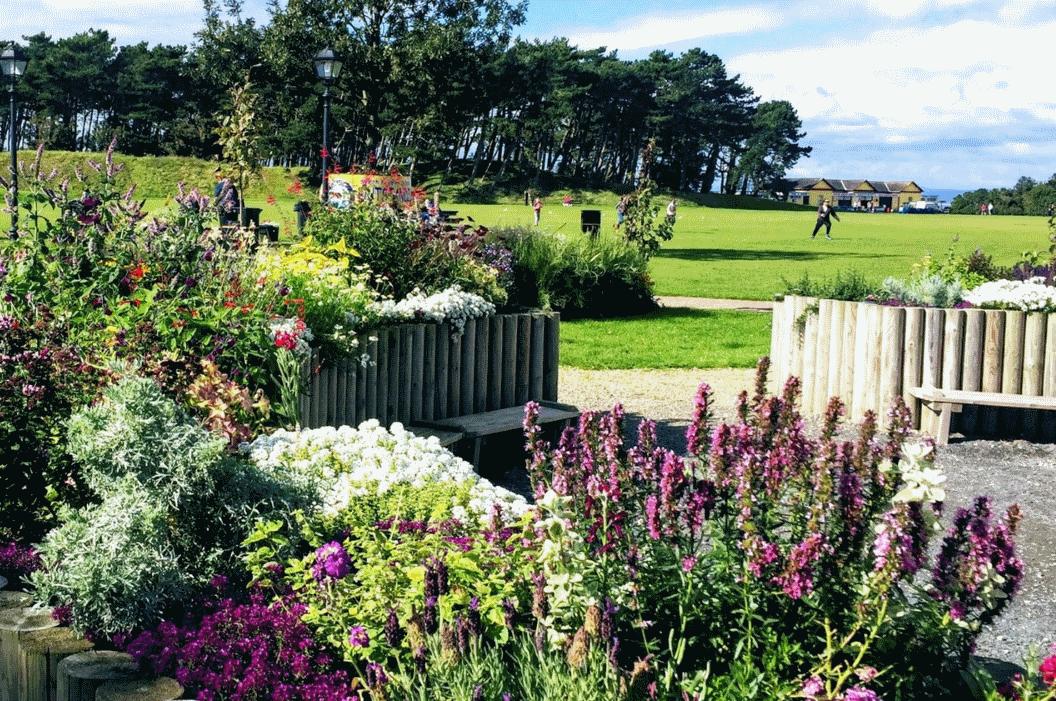 Silloth gardens