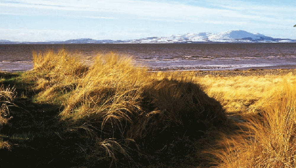 Solway Coast walks in an area of outstanding natural beauty