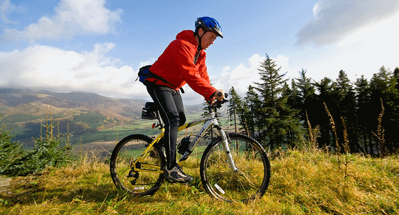Mountain biking in Whinlatter Forest
