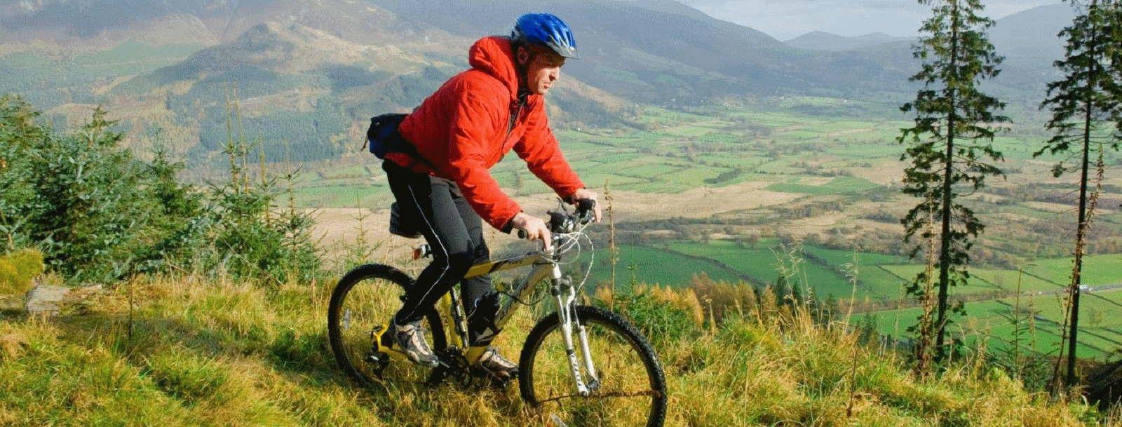 whinlatter forest mountain biking