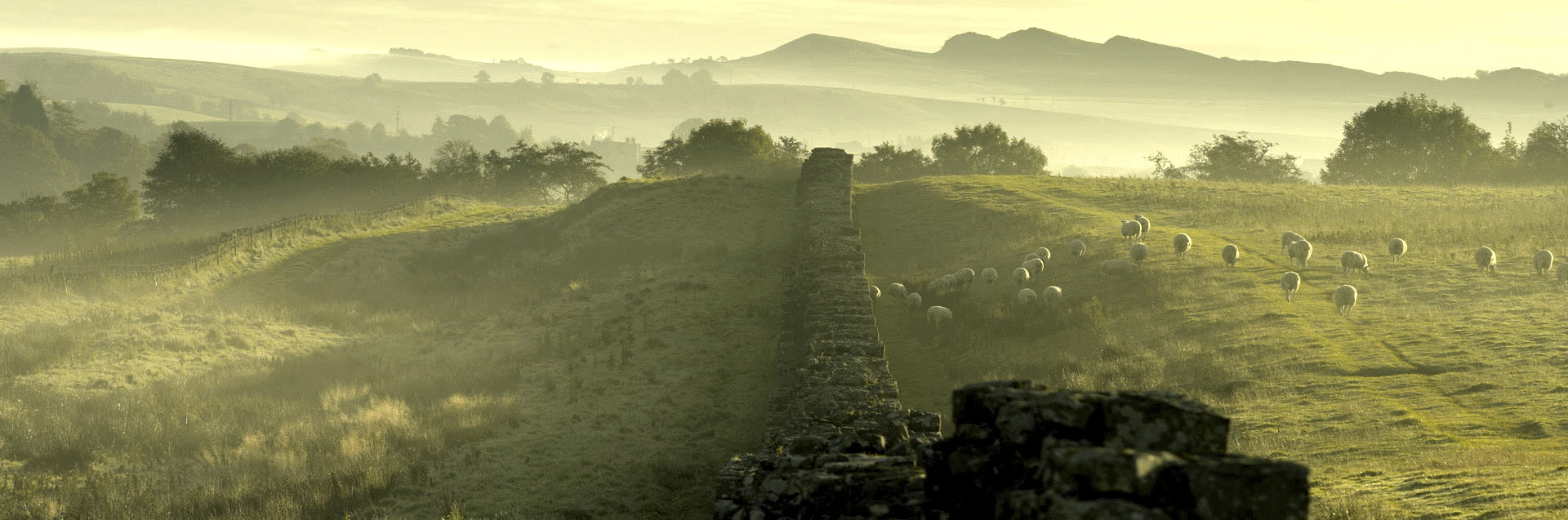 Hadrian's Wall in Cumbria