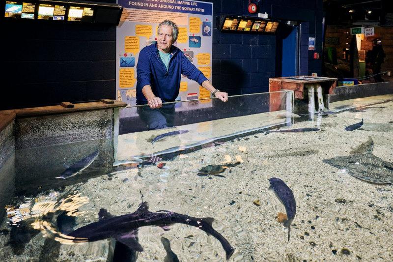 mark vollers coast maryport aquarium