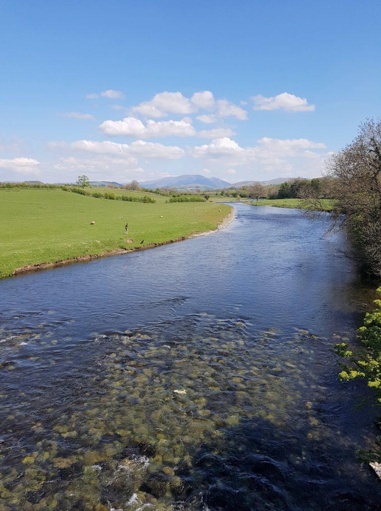 River Derwent-55ea1036